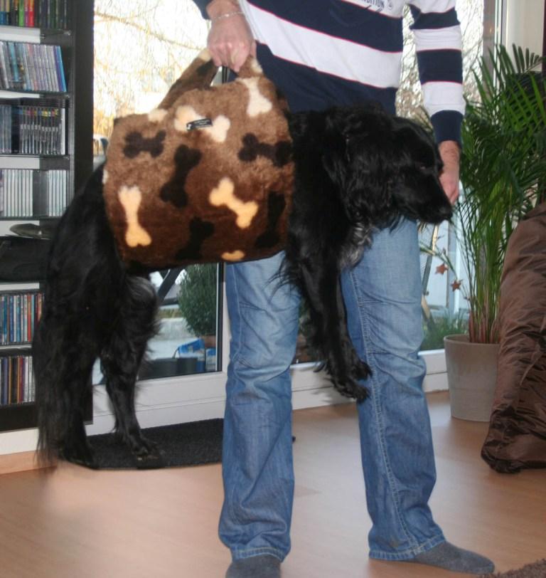 Sina mit Hundetragehilfe in Taschenform